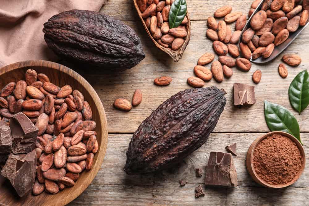 raw-cacao-bean
