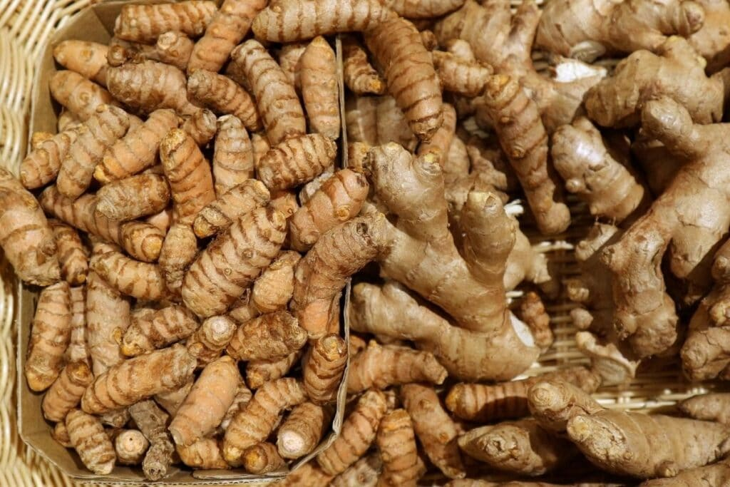 raw-turmeric-root-and-ginger-root